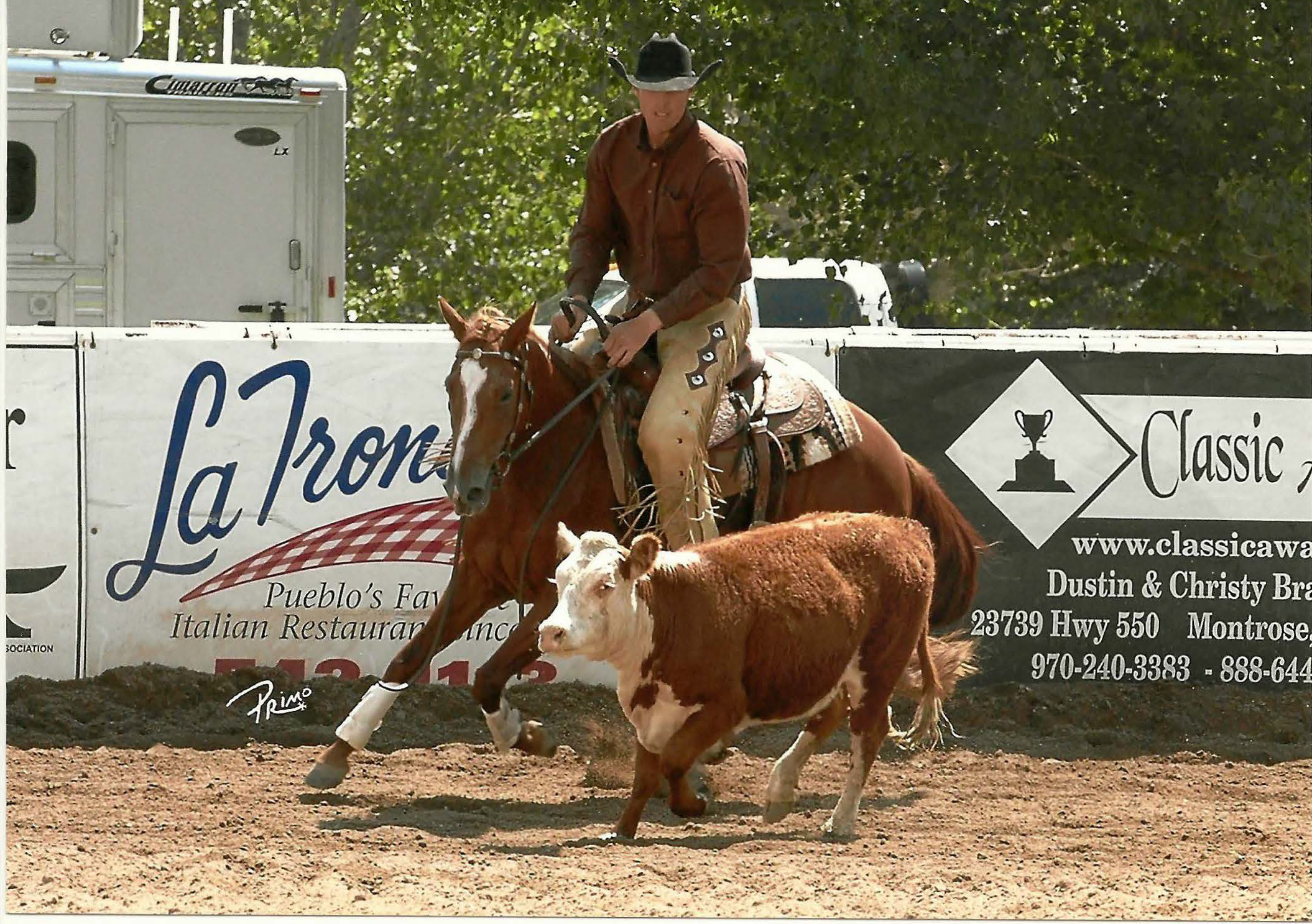 Annies Paychex | Long Pines AQHA Mare