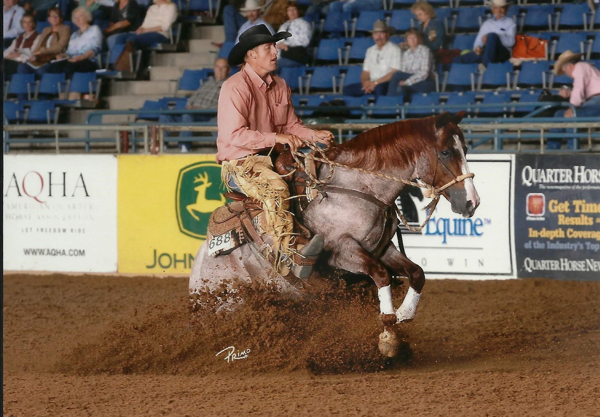 Bettin Yer Smart 2007 AQHA Red Roan Stallion