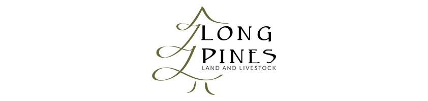 LP Logo Main