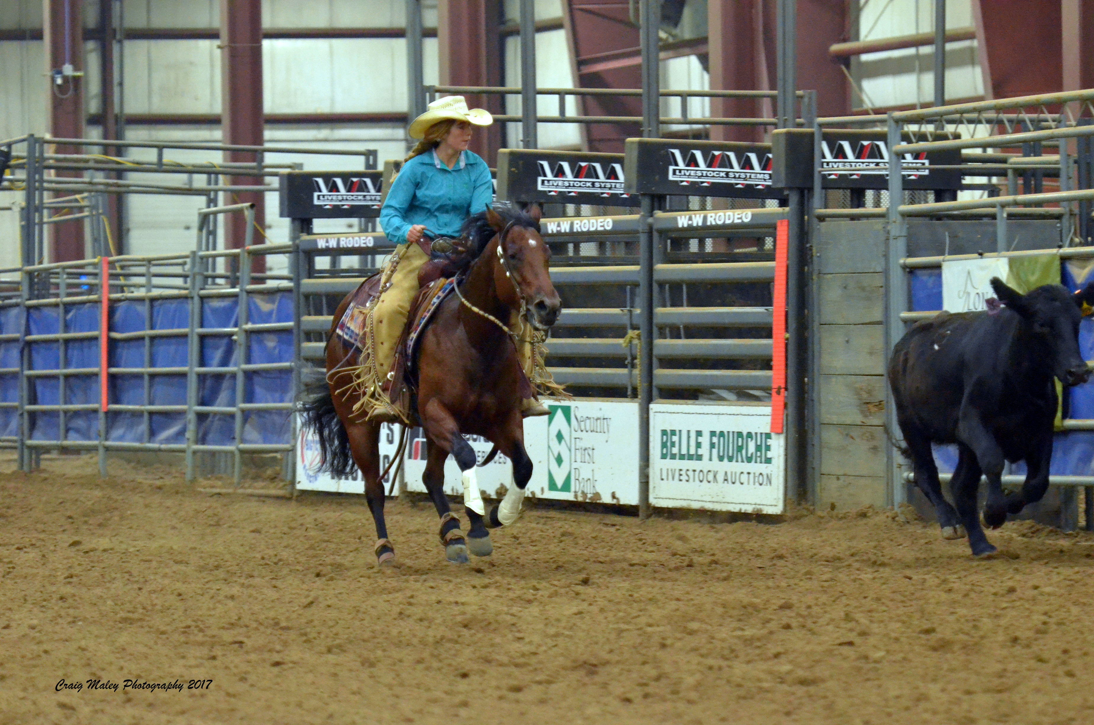 Mia Lil Pink | Long Pines Land & Livestock | Northern Plains Performance Horses