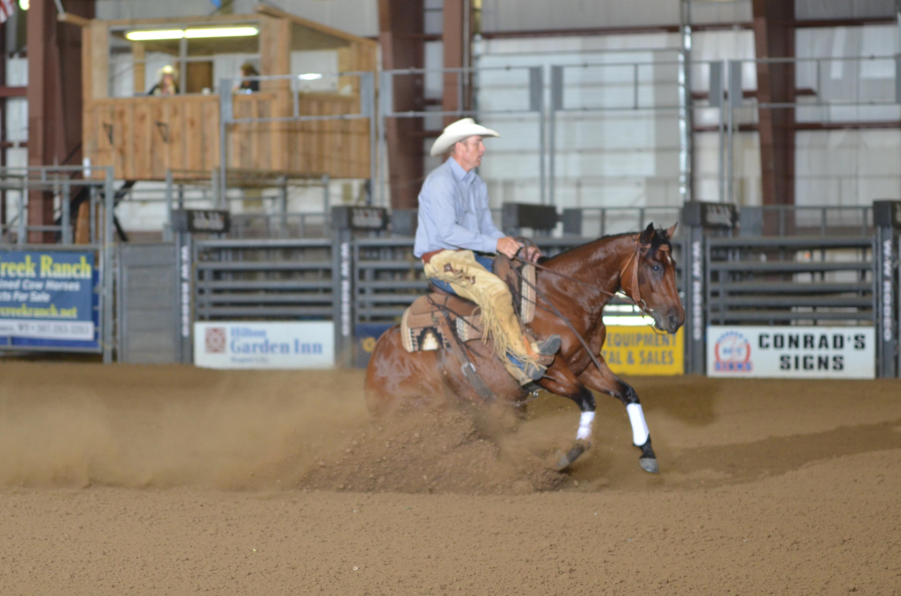 Mia Lil Pink   Long Pines Land & Livestock   Northern Plains Performance Horses