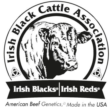 Irish Black Cattle Association