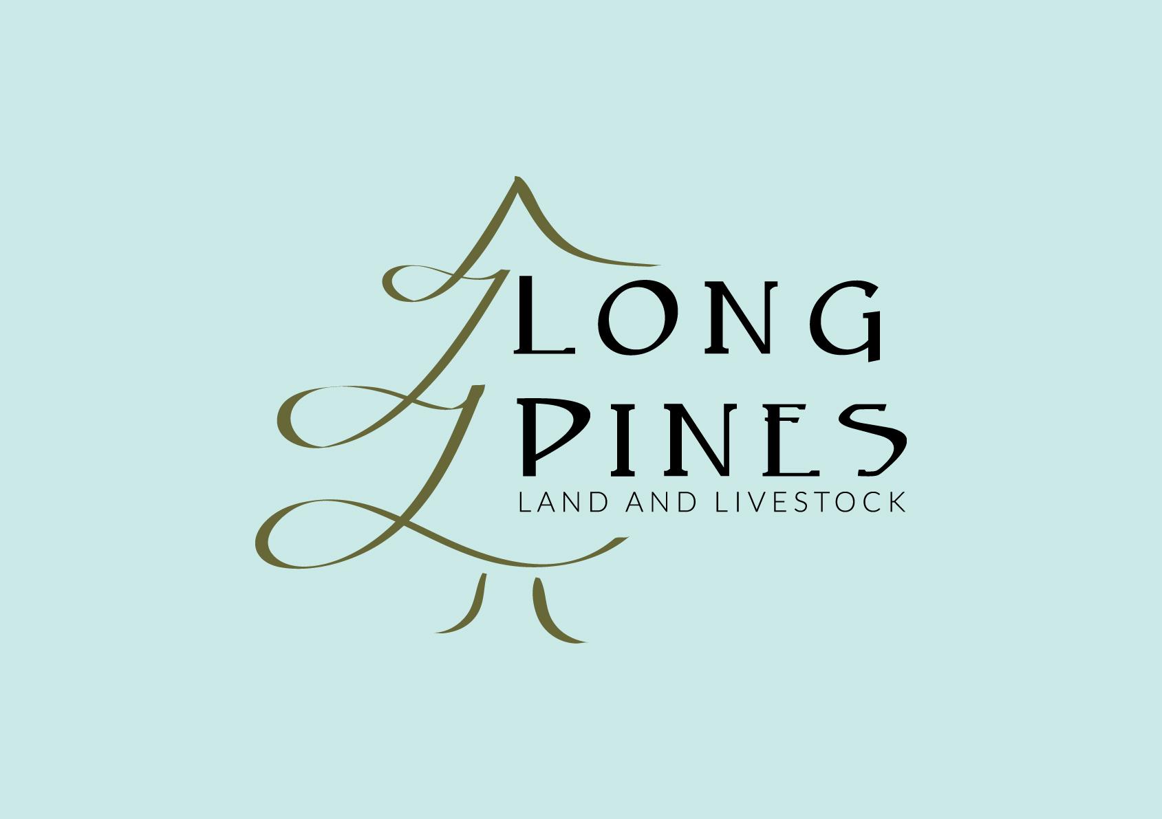 Smokin Hickory Girl | Long Pines AQHA Mare