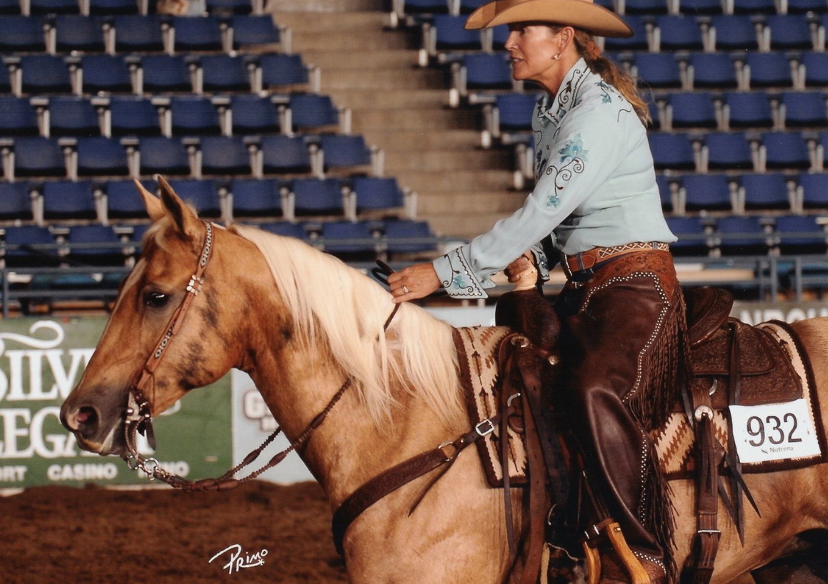 Shiners Spumanti | Long Pines AQHA Mare