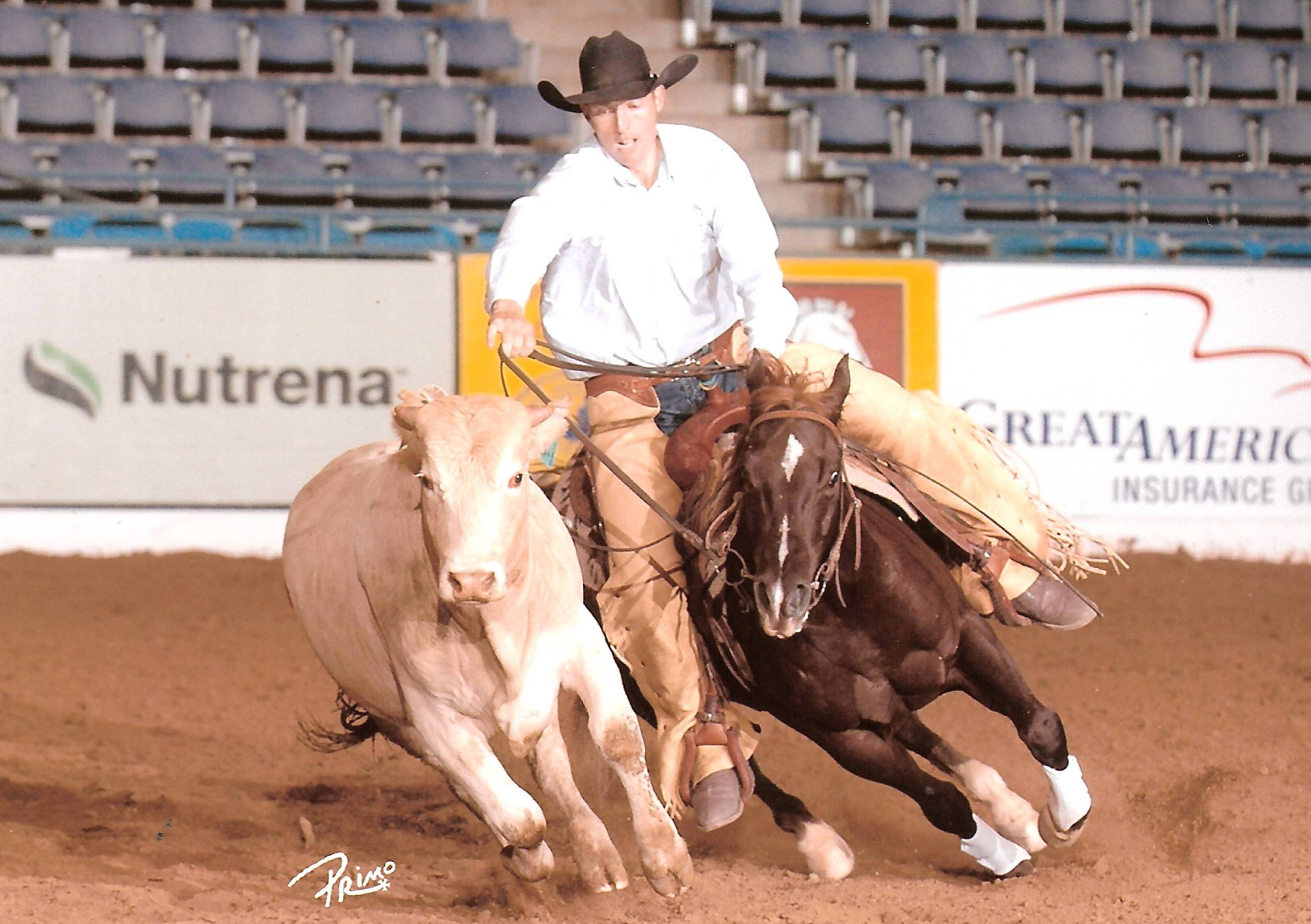 Dual Feature | Long Pines AQHA Mare