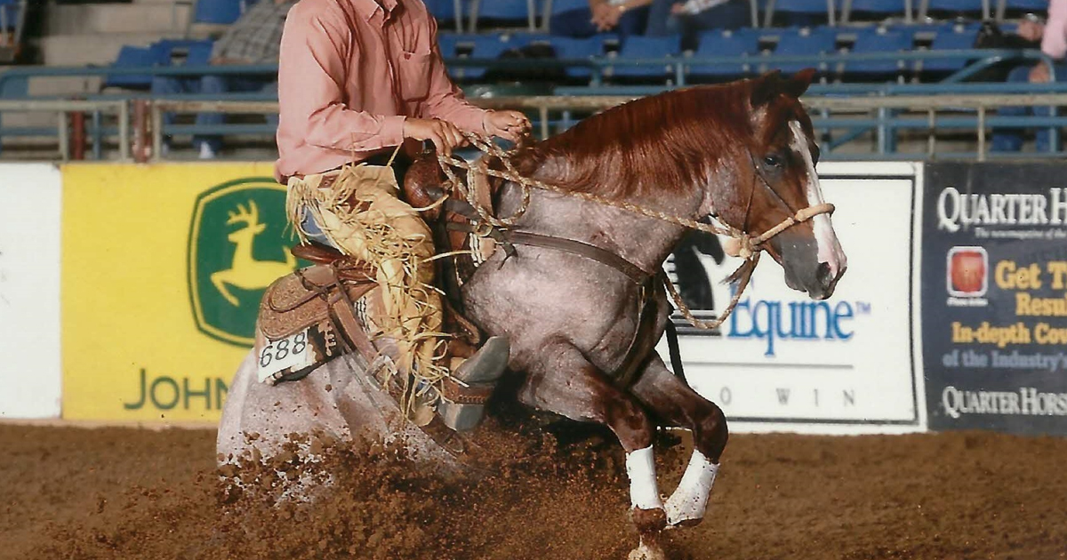 Bettin Yer Smart AQHA Stallion