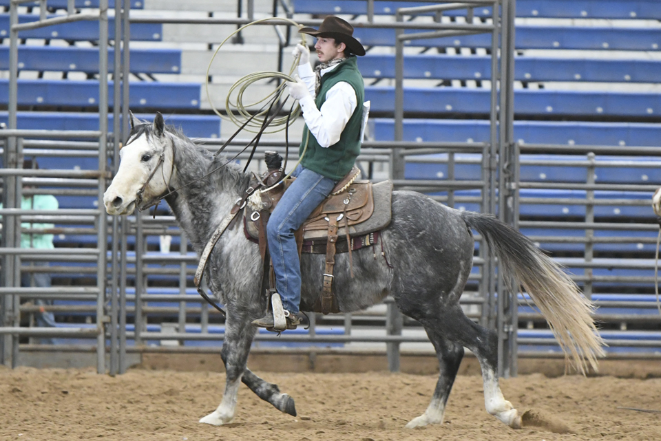 FINISHED AQHA Horse | Dont Bug the Judge