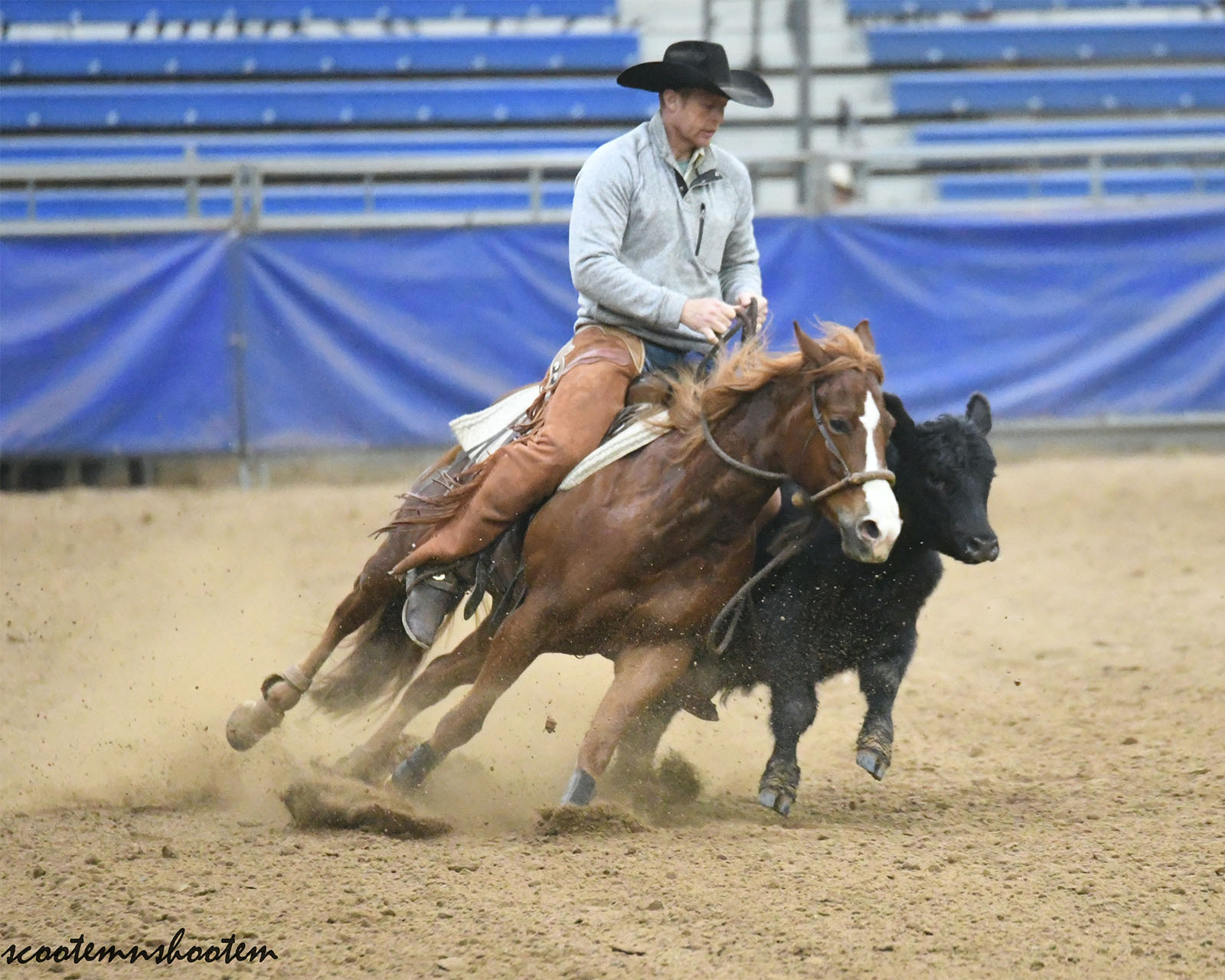 Smokin the Jay |2016 AQHA Sorrel Gelding