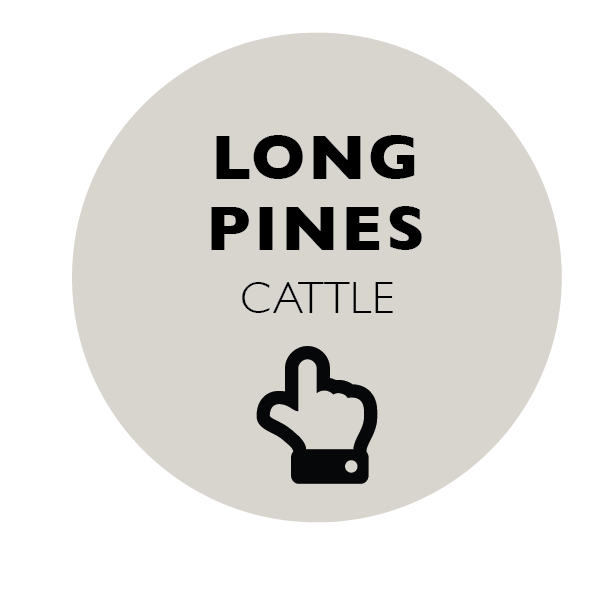 Long Pine's Black & Irish Red Cattle