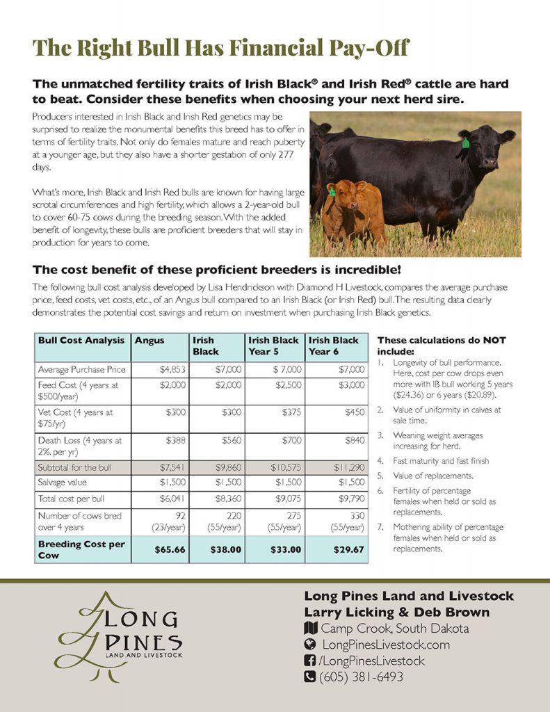 Bull Buying
