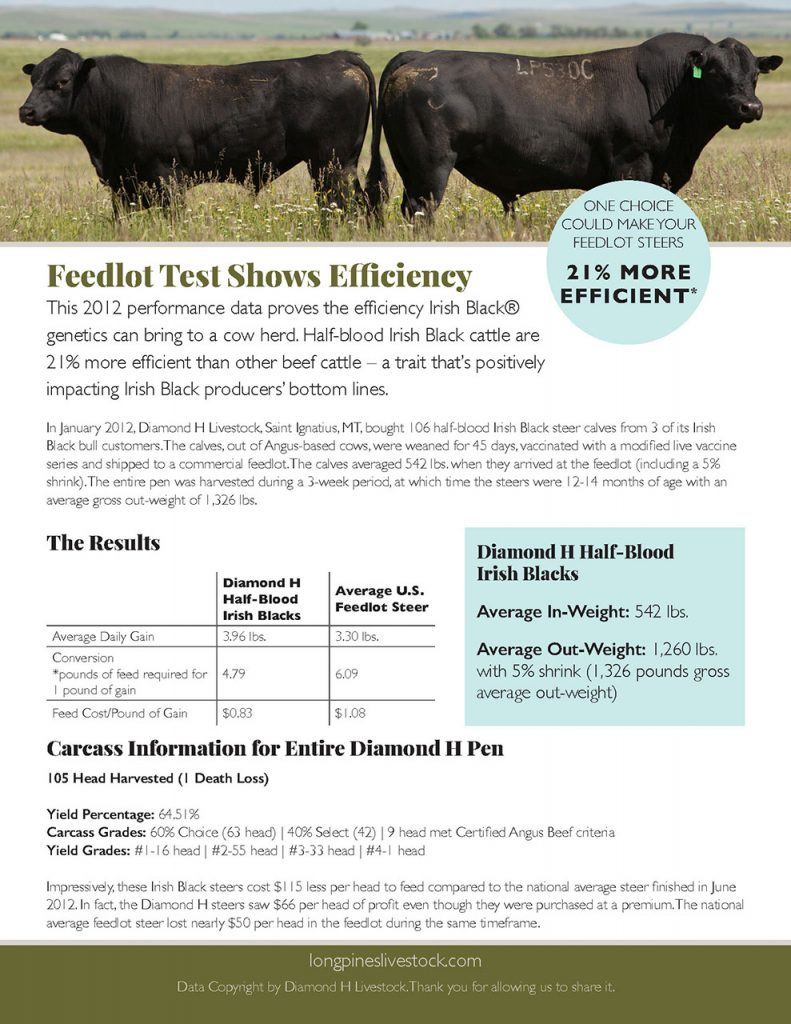 Feedlot Efficiency