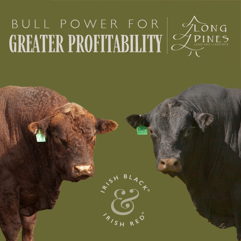 LP Profitability