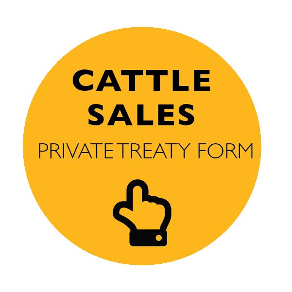 CattleLinks_CattleSalesYellow-06