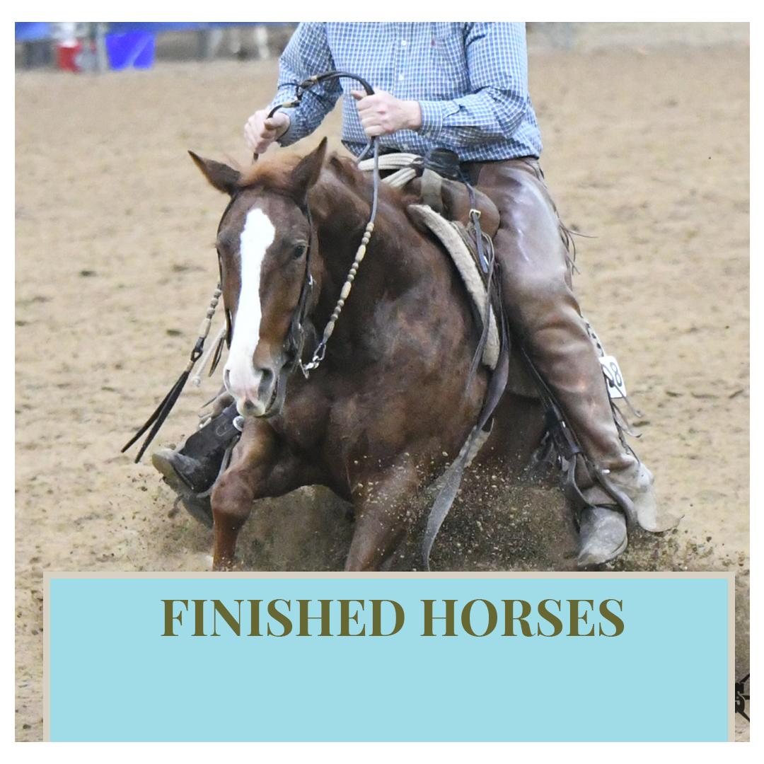 Finished Horses