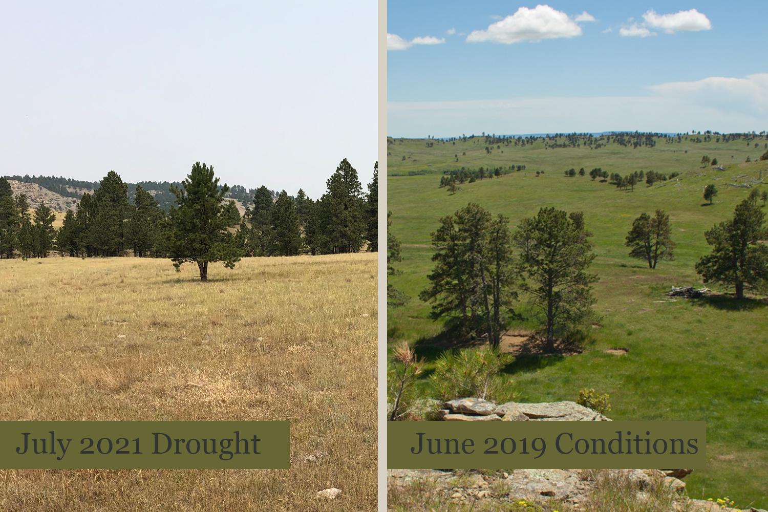 A look at current drought conditions